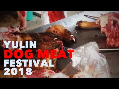 The Yulin Dog Meat Festival – East Van to Elsewhere