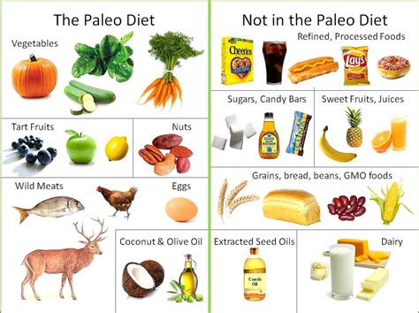 Plant Meets Paleo: Ten Things I Learned On A 30 Day Paleo Diet