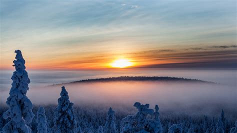 Opportunities to study in Finland | National Academy of
