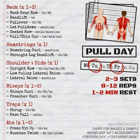 Push/Pull/Legs Split: 3-6 Day Weight Training Workout