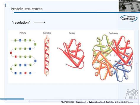 PPT - Mining the Genome PowerPoint Presentation - ID:35781