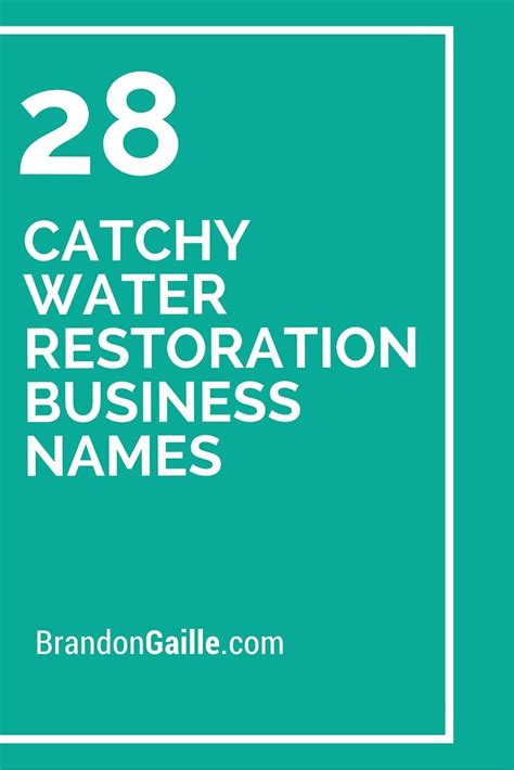 101 Catchy Water Restoration Business Names | Business